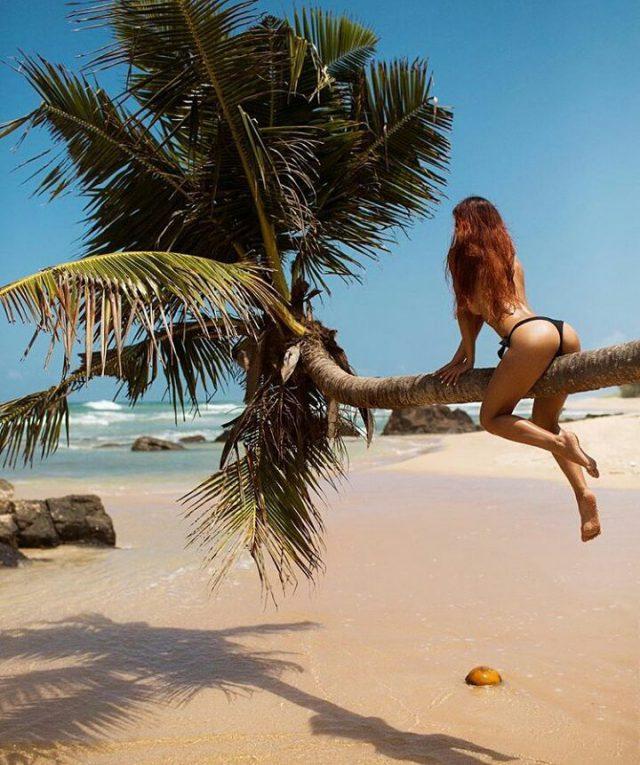 девочка на пальме